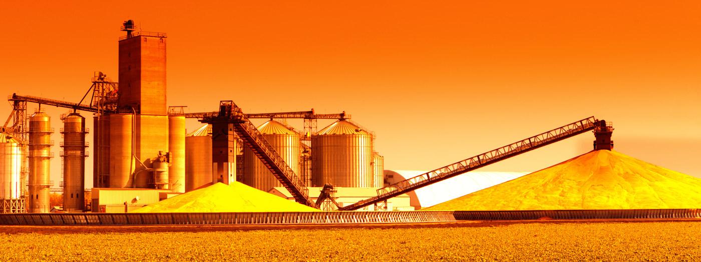 harvesting crops