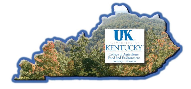 University of Kentucky's Department of Forestry