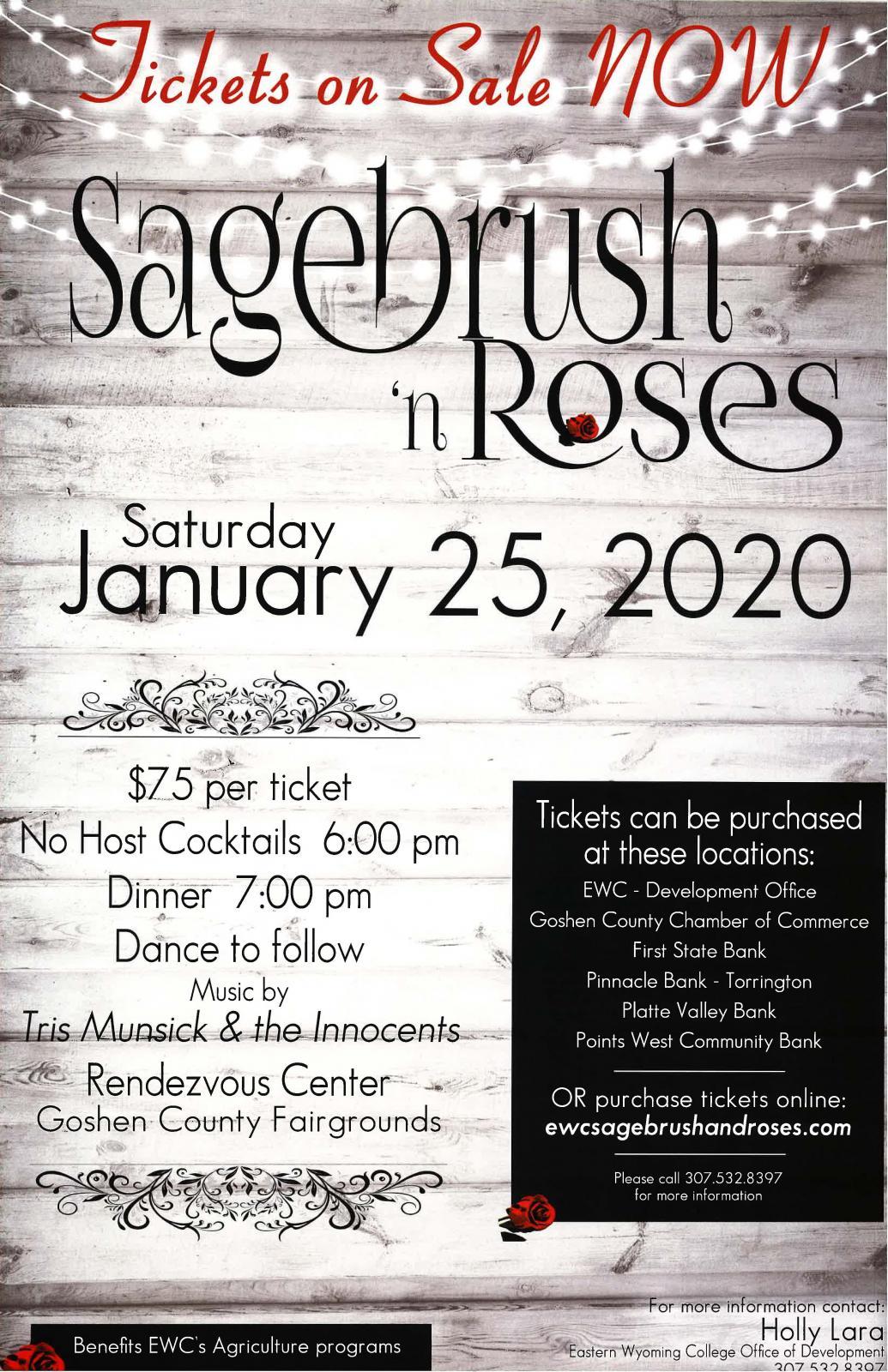 Sagebrush 'n Roses Photo