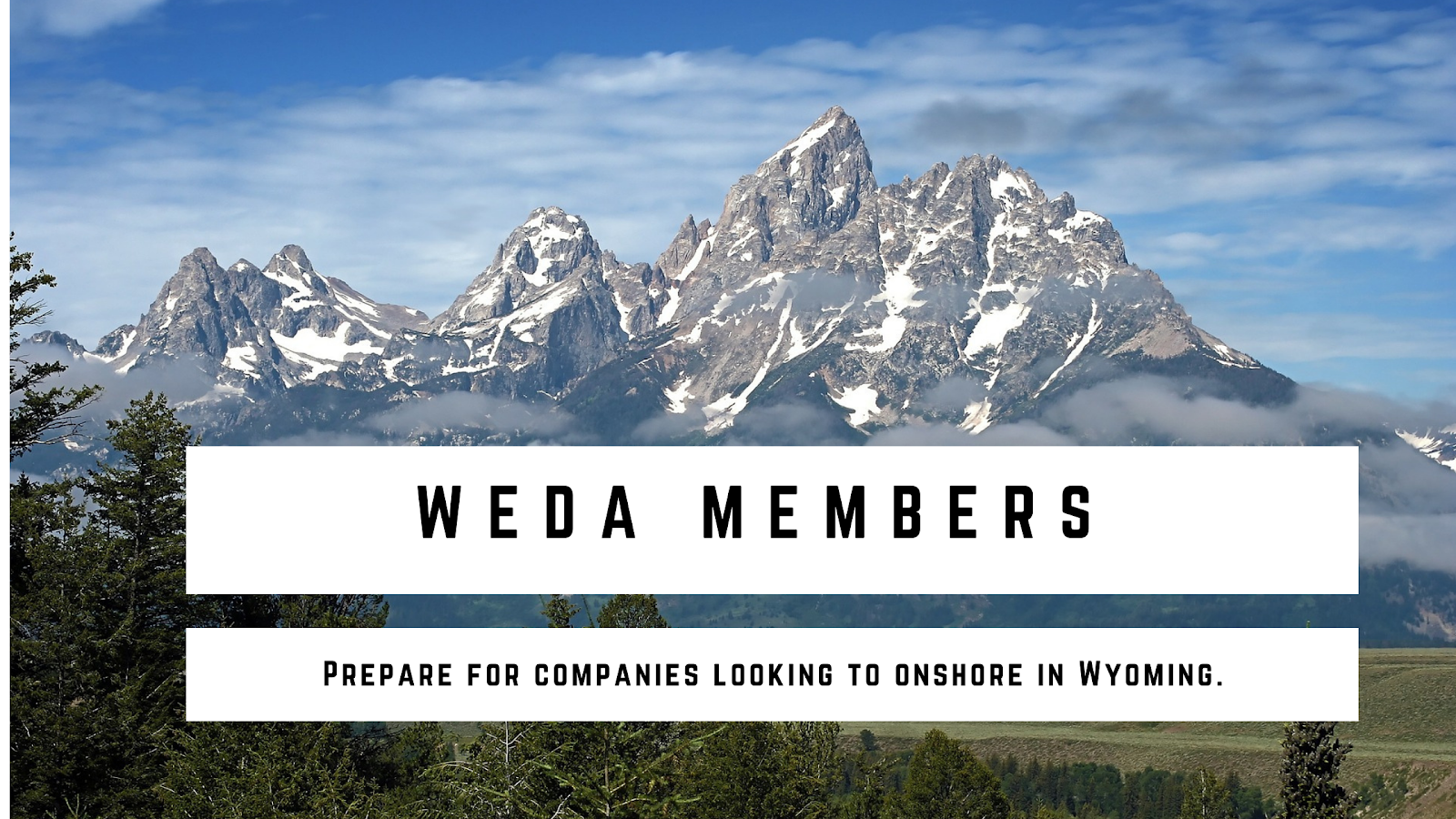 WEDA Members: Follow these Steps to Prepare for Site Selector Requests Photo - Click Here to See
