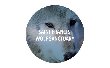 Saint Francis Wolf Sanctuary Image