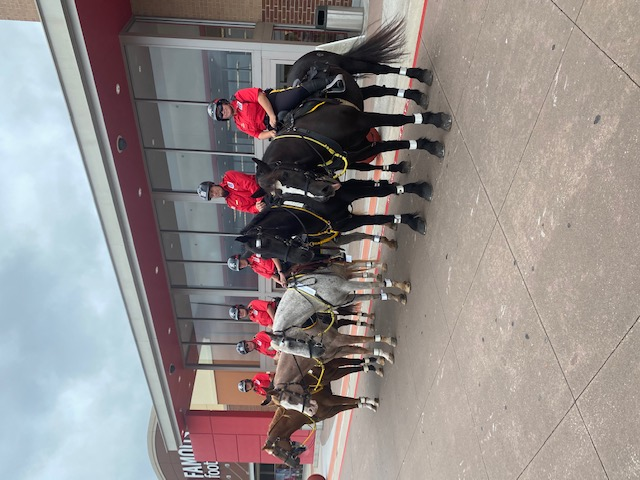 The Mounted Patrol is Saddled Up to Make WMPID Safer Main Photo