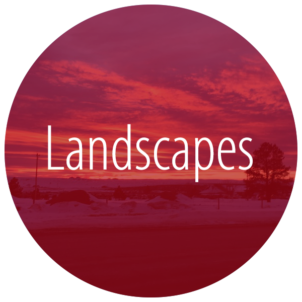 click here for landscapes