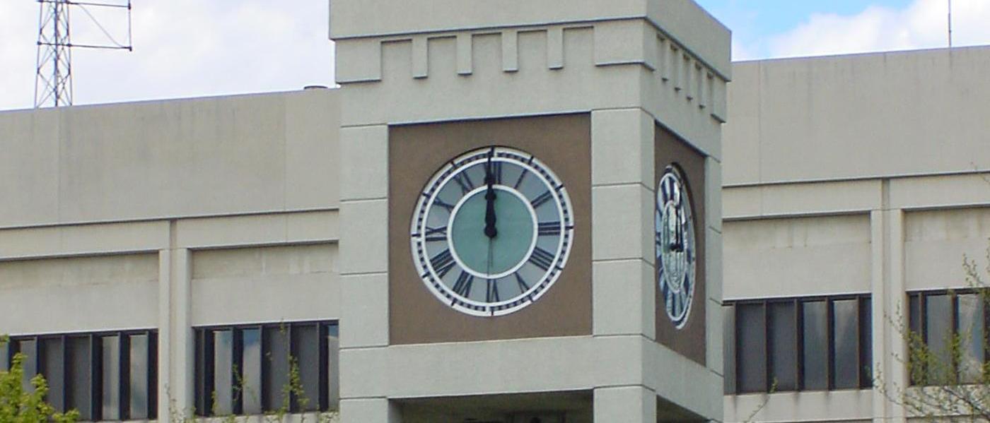 Saginaw Future Local Government Contracts