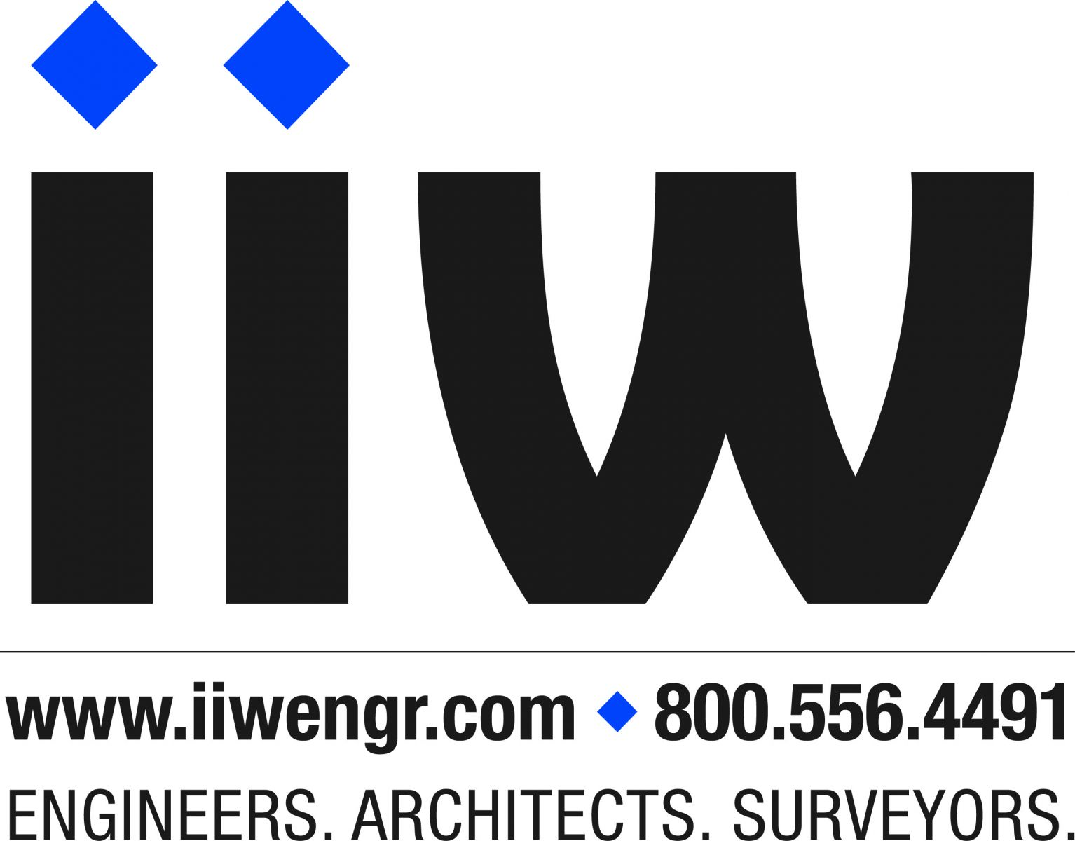 IIW - Engineers, Architects, Surveyors Slide Image