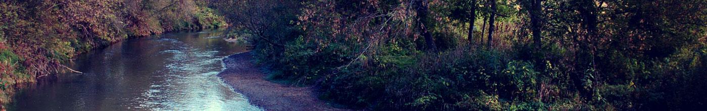 Pierce County Parks