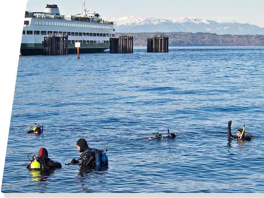 scuba divers in Puget Sound