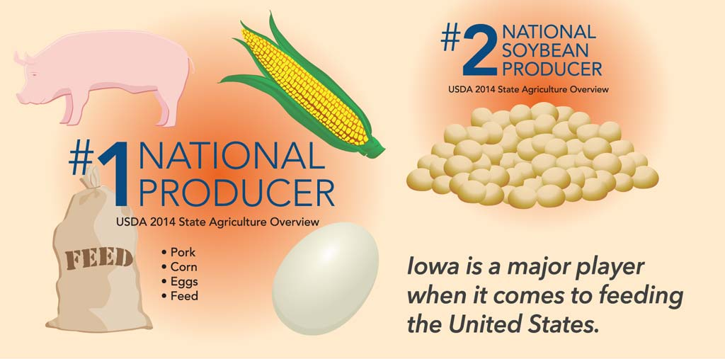 ag industry infographic
