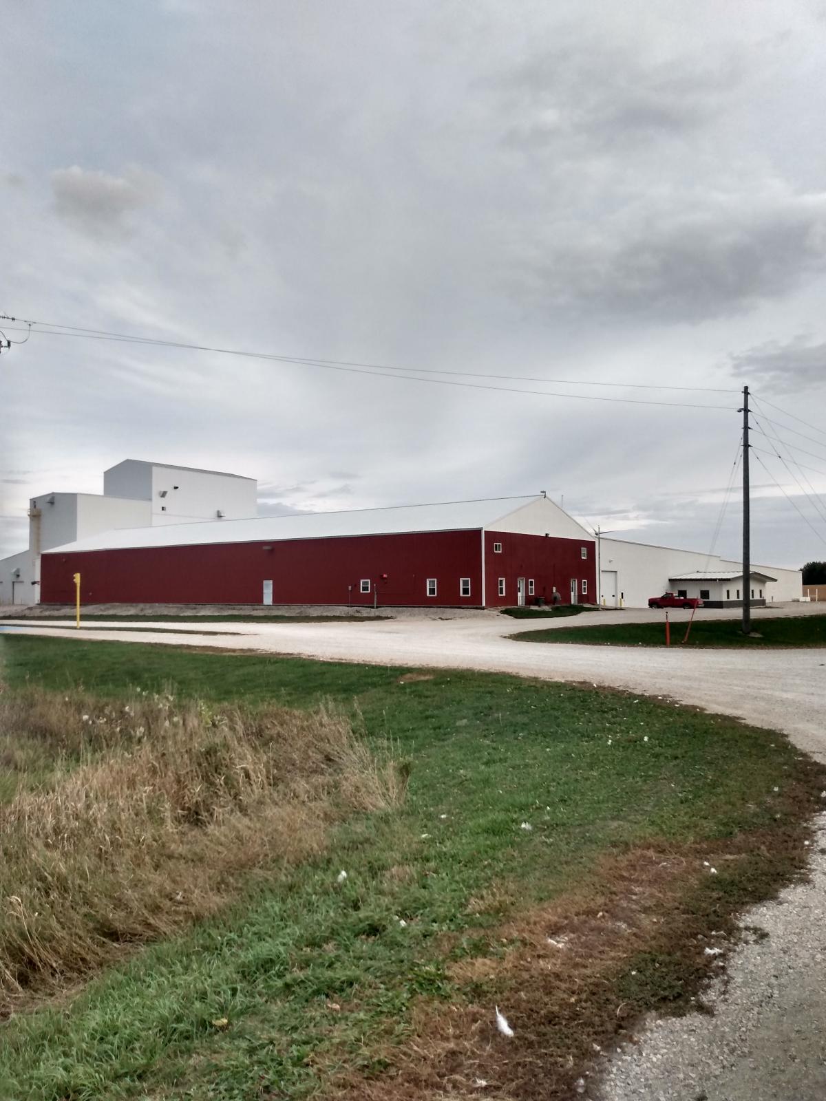 Remington Seeds Thrives in Sac County Iowa Main Photo