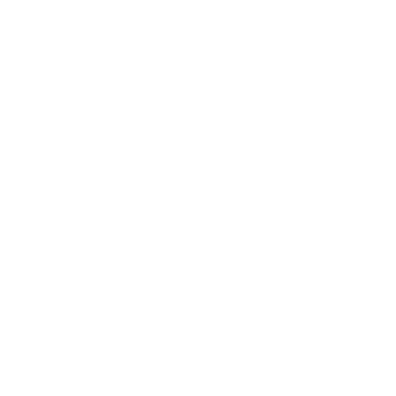 no prperty tax