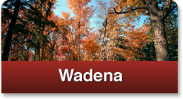 click here for wadena