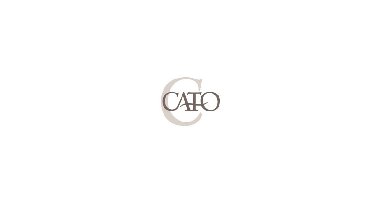 Cato - limited apparel Slide Image