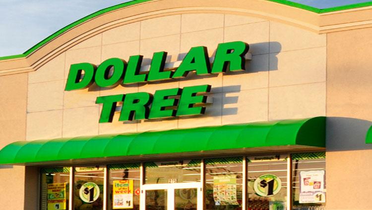 Dollar Tree Slide Image