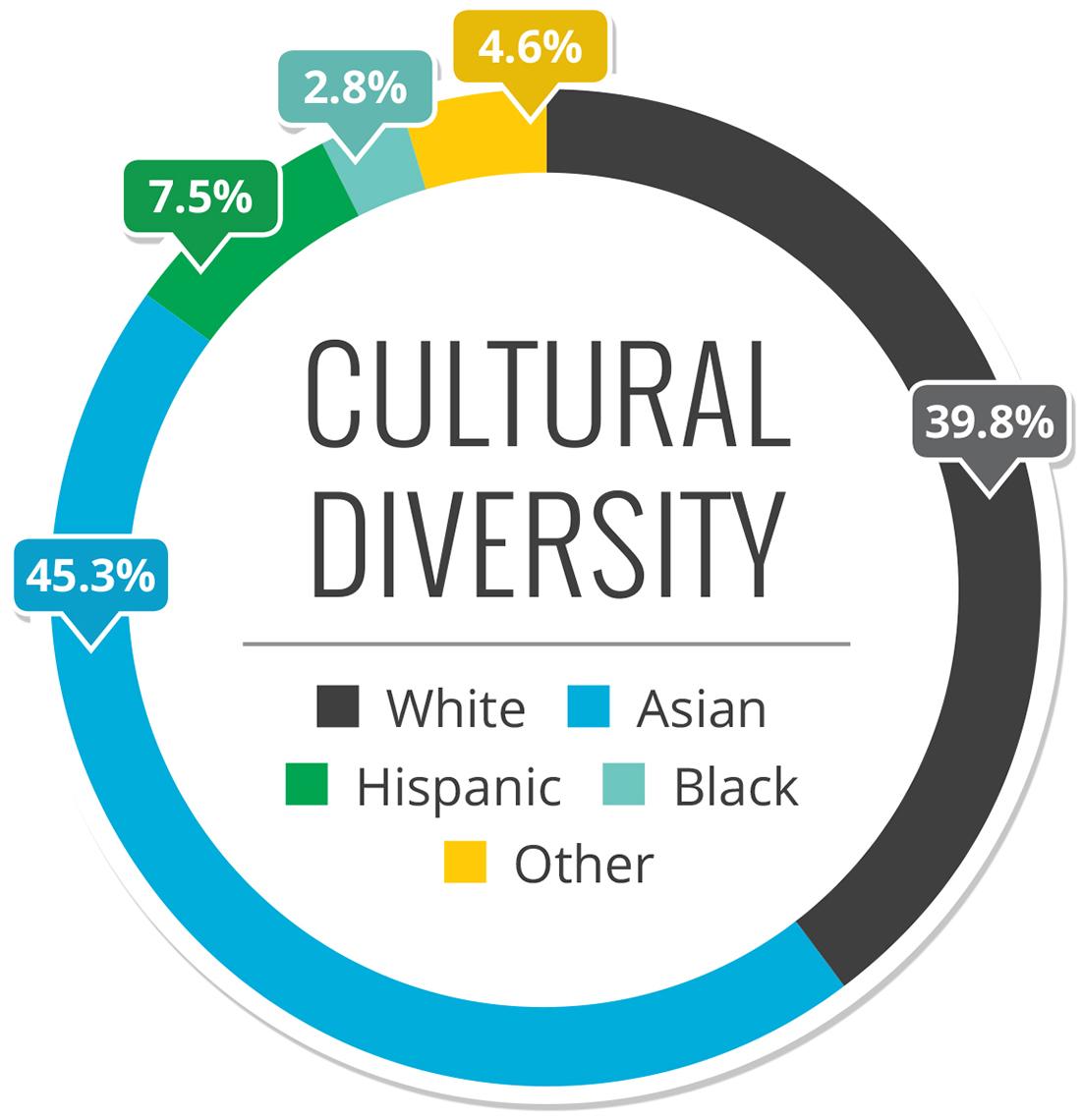 cultural diversity chart