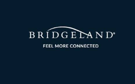 Bridgeland Slide Image