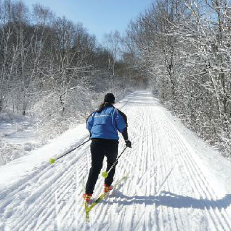 cross country skier