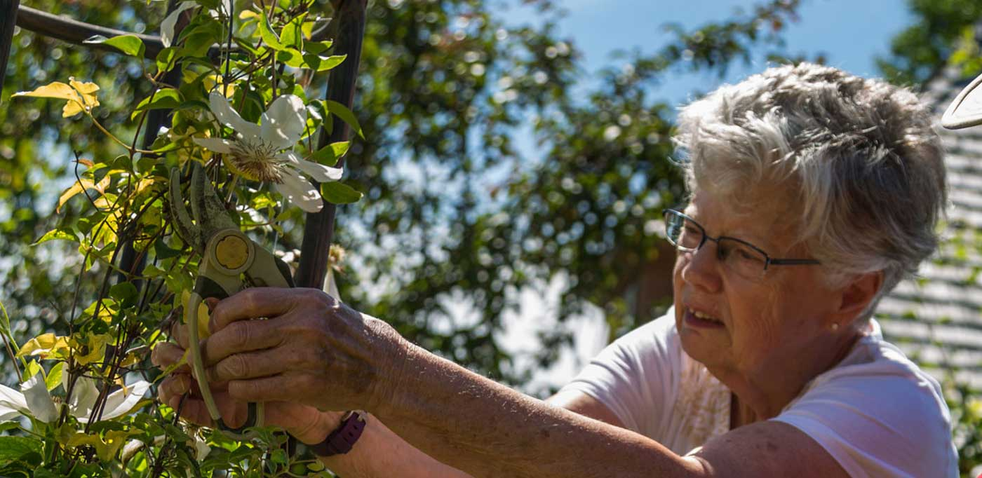 senior women pruning plants