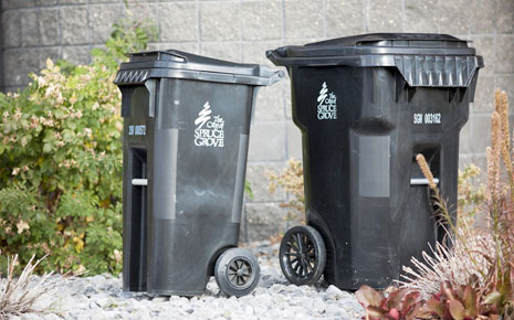 Thumbnail Image For Garbage, Organics, & Recycling - Click Here To See