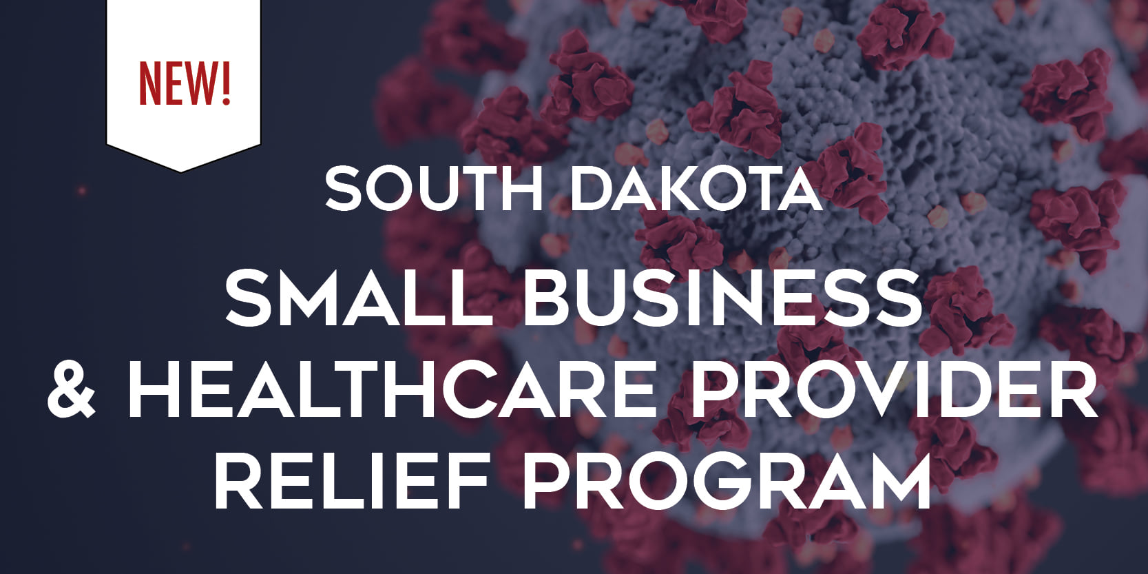 Governor Noem announces the Small Business and Healthcare Provider Relief Program Main Photo