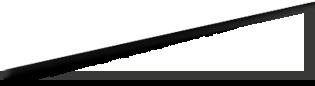 Header Logo Polygon Image